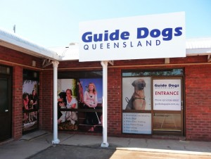 Guide dogs Townsville printed windows signs